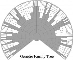 Genetisk anetre