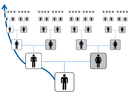 Y-DNA testing to verify lines