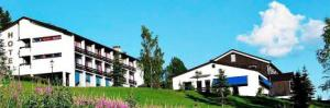 Morgedal Hotel Telemark is one of many hotels in Norway is now for sale.