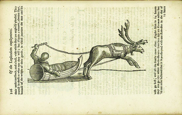 Photo: Norwegian National Library A woodcut of a reindeer-drawn pulk, page 106 of The History of Lapland by Johan Scheffer, published in 1674.
