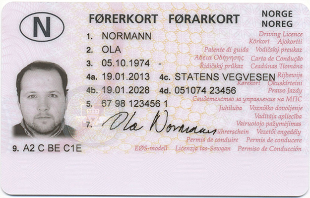 Security Guard License