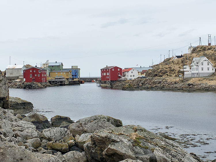 Photo: David Nikel The remote fishing village of Nyksund has enjoyed a new lease of life as a tourist stop.
