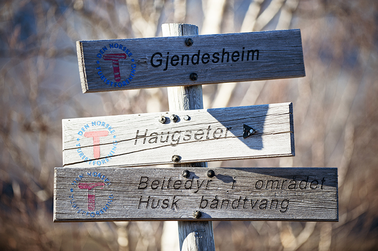 Photo:  Terje Rakke / Nordic Life AS /  Visitnorway.com An example of the DNT signs you'll see marking trails throughout Norway. Though they're relatively easy to follow, consider making friends with a more experienced hiker or taking a guided tour if you're nervous. And always bring your map and compass!