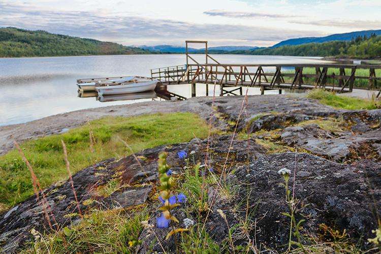 A dock.