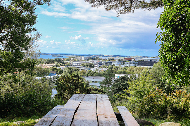 Stavanger travel: Botanical Garden