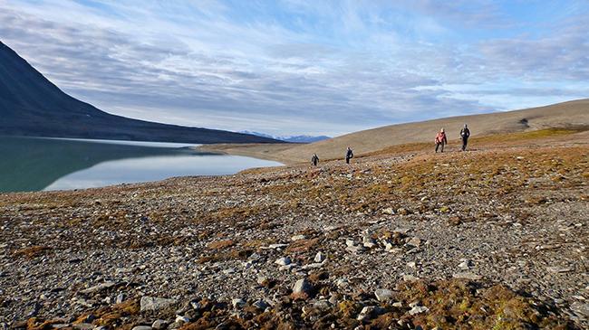 Svalbard precipitation at Vårfluesjøen