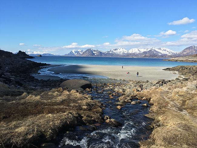 Lofoten beaches