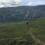 Nidaros pilgrimage