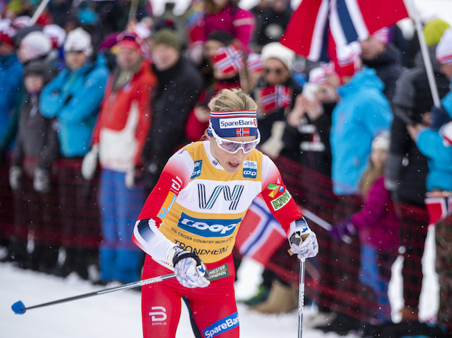 Norwegian cross-country world cup race