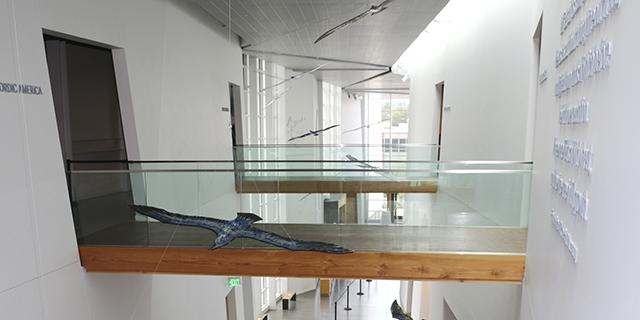 National Nordic Museum