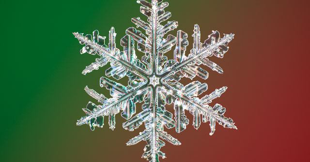 Nathan Myhrvold snowflakes