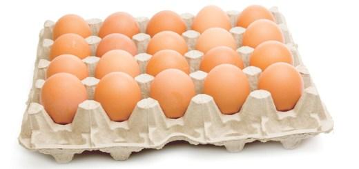 a score of eggs