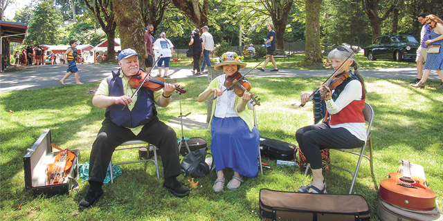 a group of fiddlers