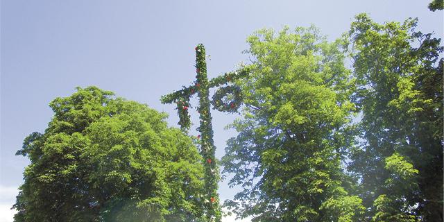 Swedish maypole at Vasa Park Resort