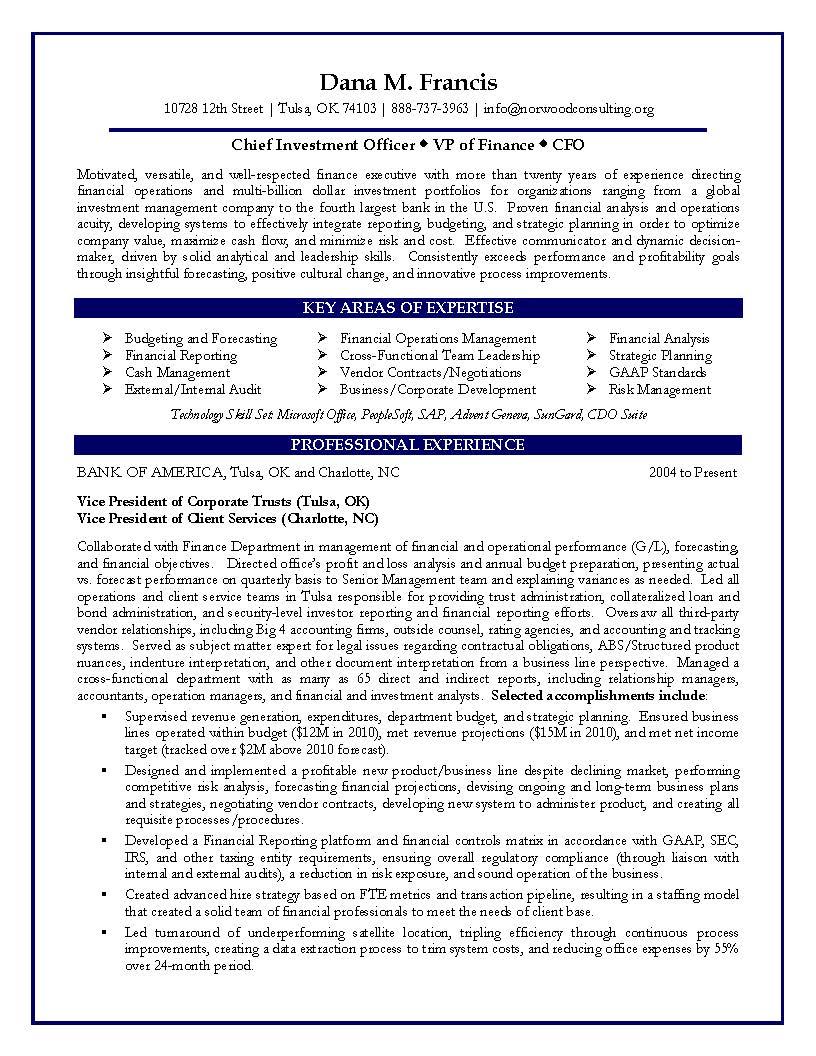 vp resume samples finance