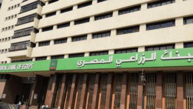 التقديم على مسابقة البنك الزراعي المصري 2021 .. الشروط ورابط إرسال المستندات