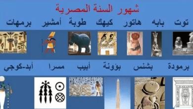 موعد انتهاء شهر طوبة 2021 وإجازة ثورة 25 يناير رسميًا