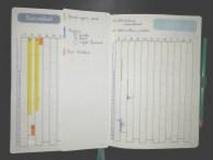 Bullet Journal - tracker santé
