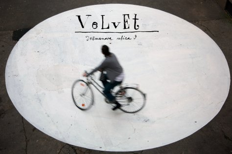 photo-for-velvet-landing-page