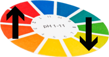 The Best pH Level For Your Hydroponic Vegetable Garden