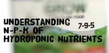 Understanding N-P-K Ratio Of Hydroponic Nutrients