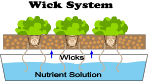 What Is Wick Hydroponics?