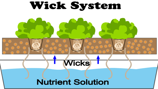 This is a diagram of a wick hydroponic system