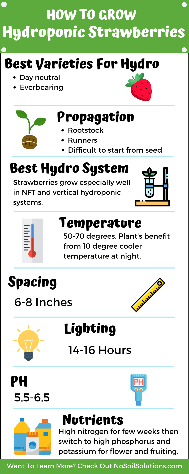 How To Grow Hydroponic Strawberries - NoSoilSolutions
