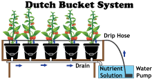 How To Build A 5 Gallon Hydroponic Bucket - NoSoilSolutions