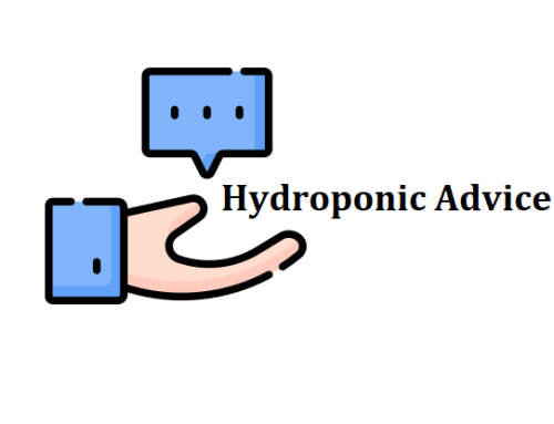 5 Pieces Of Advice For Hydroponic Beginners