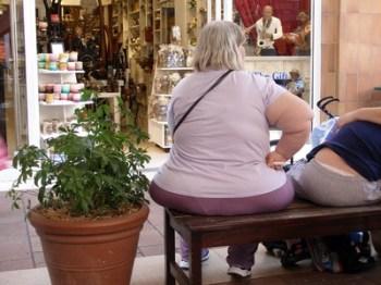 Como Causamos la Obesidad