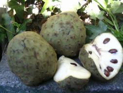 Beneficios de la Chirimoya: dietas de adelgazamiento y prevención del cáncer