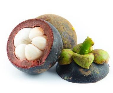 Garcinia Cambogia y su utilidad para Perder Peso