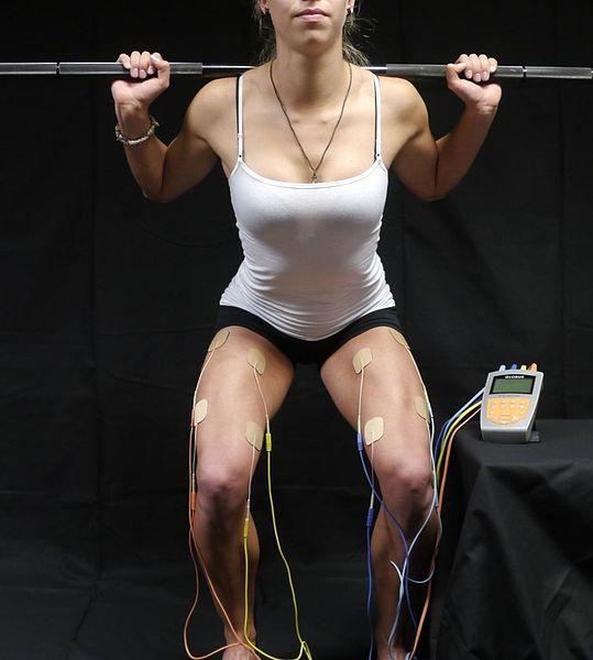 Aunque la electroestimulación es beneficiosa para la recuperación muscular, no hay ninguna investigación que demuestre que ayuda a la pérdida de peso.