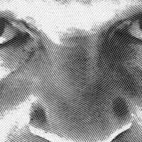 Hannibal y la cámara subjetiva