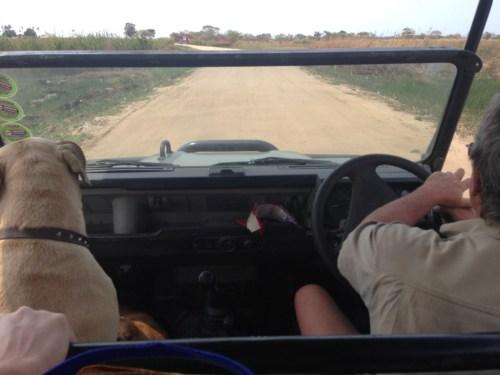 Um jipe-taxi nos levou até a Praia da Macaneta (detalhe, Sr. estava com os seus dois dogs amados junto, bem do seu lado <3)