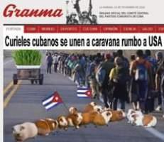 "May be an image of 2 people, animal and text that says 'LA HABANA, 23 Granma CUBA DICIEMBRE DE 2020 ORGANO OFICIAL DEL COMITÉ CENTRAL DEL PARTIDO COMUNISTA DE CUBA MUNDO DEPORTES CULTURA PORTADA OPINIÃ""N CIENCIA SALUD ESP Curieles cubanos se unen a caravana rumbo a USA'"