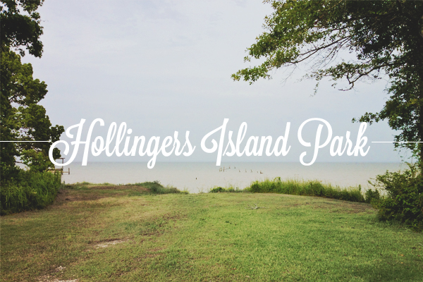 hollingersisland park