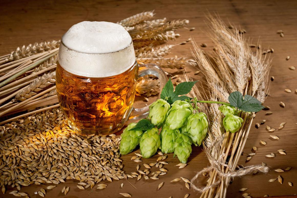 Reinheitsgebot - Ο Νόμος περί Καθαρότητας της Μπύρας | Νόστιμον ήμαρ