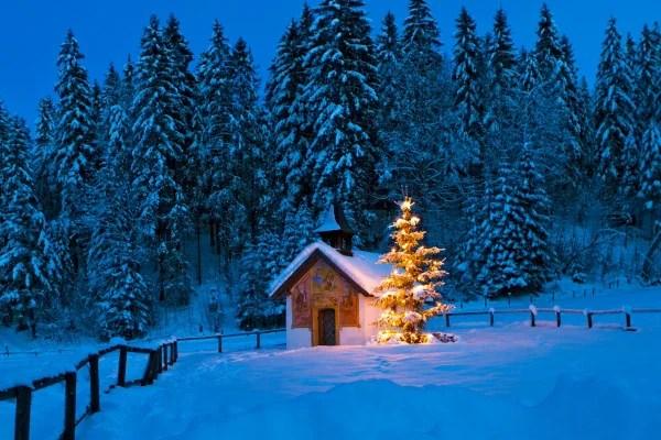 Perch a Natale si fa lalbero  Nostrofiglioit
