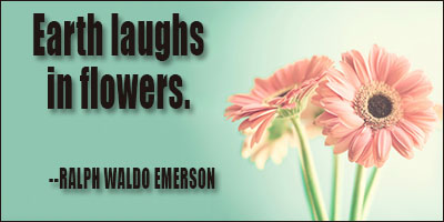 Earth laughs in flowers.