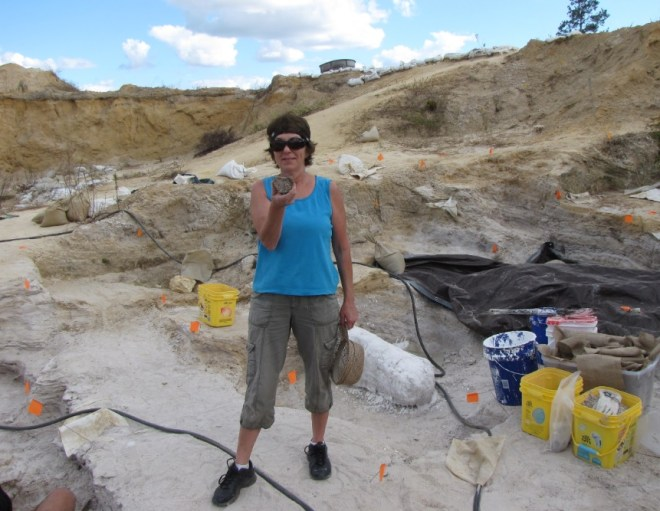 Blogger Susan Howell at University of Florida fossil dig, November 2016