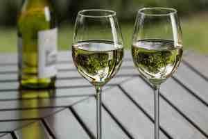 乳酸菌の日には乳酸発酵を行った白ワインを