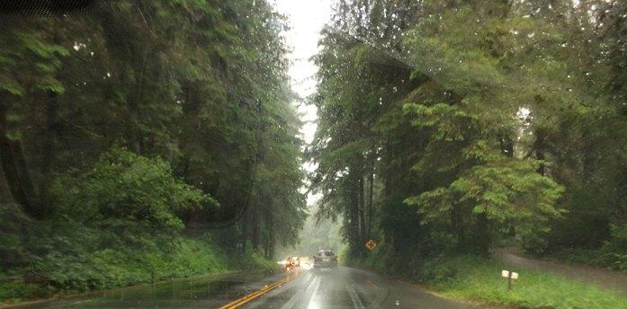 Carretera lluviosa en California