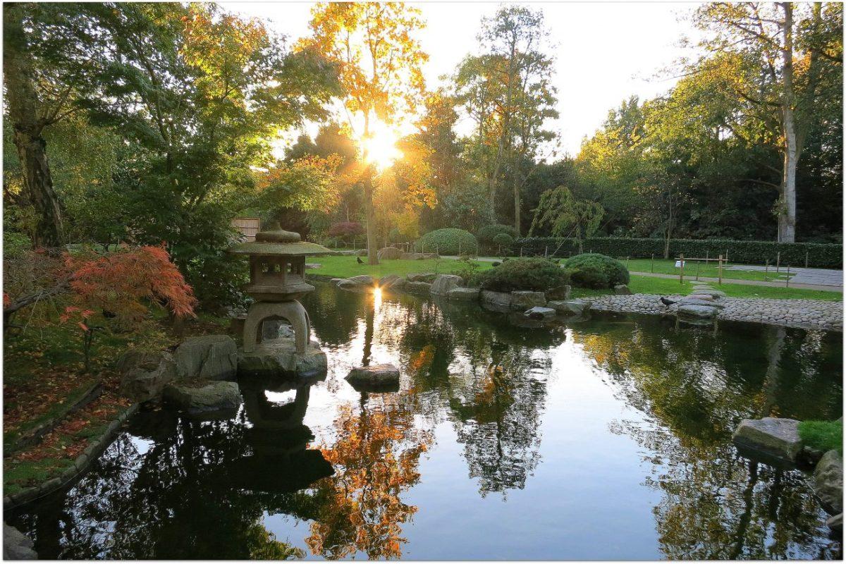 Notas desde el jardín japonés de Holland Park