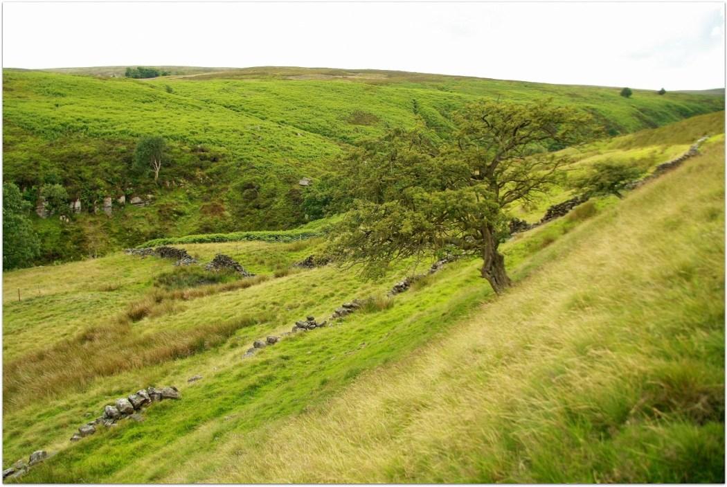 El paisaje de Yorkshire
