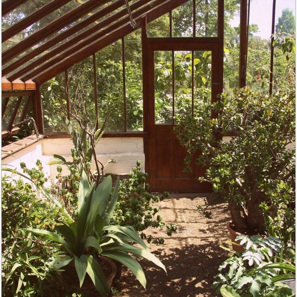 Jardín botánico de Chelsea