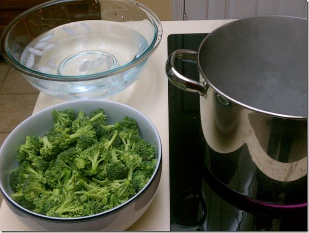 Macys-Emeril-broccoli-casserole