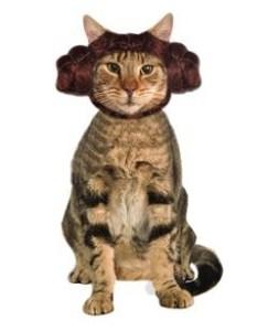 leia-cat-headband