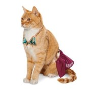 princess-leia-bikini-costume-for-cats